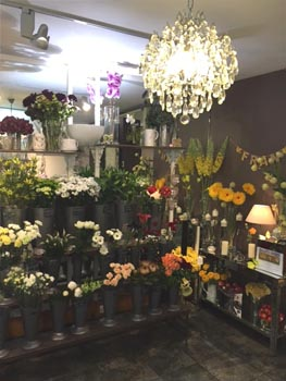 Bay Tree Florists shop front